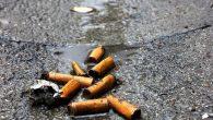 """Sigara izmariti 10 yılda çözünüyor"""
