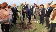 CHP'liler ağaç dikti