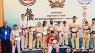 Yayladağı'lı Karatecilerden Türkiye Başarısı