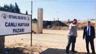 Reyhanlı Belediyesi, Hayvan Pazarı yaptırıyor