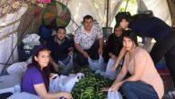 CHP'liler ekime başladı