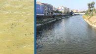 Asi Nehri'nin yoğunlaşan suyunda…