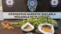 İskenderun'da uyuşturucu ile mücadele