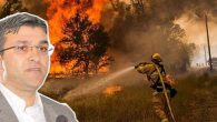 Yeşildal: Yangınları terör örgütü çıkartıyor