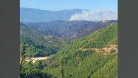 Yaşanan Orman Yangınları