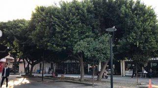 Künefeciler Meydanı'ndayız…
