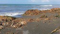 Samandağ sahili çok kirli